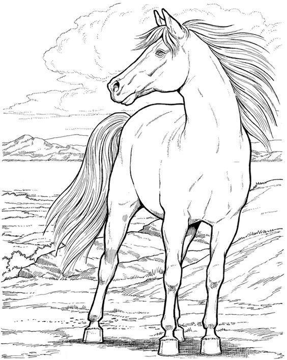 cabalos para colorear