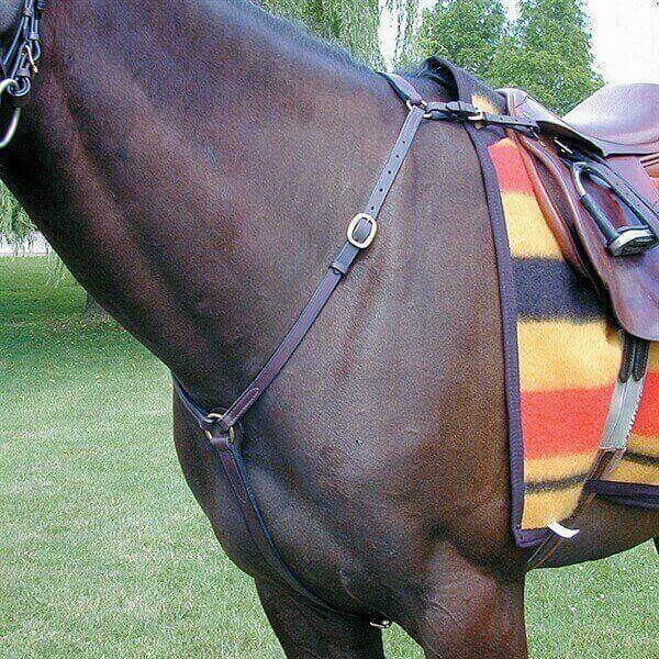 percheras de caballos