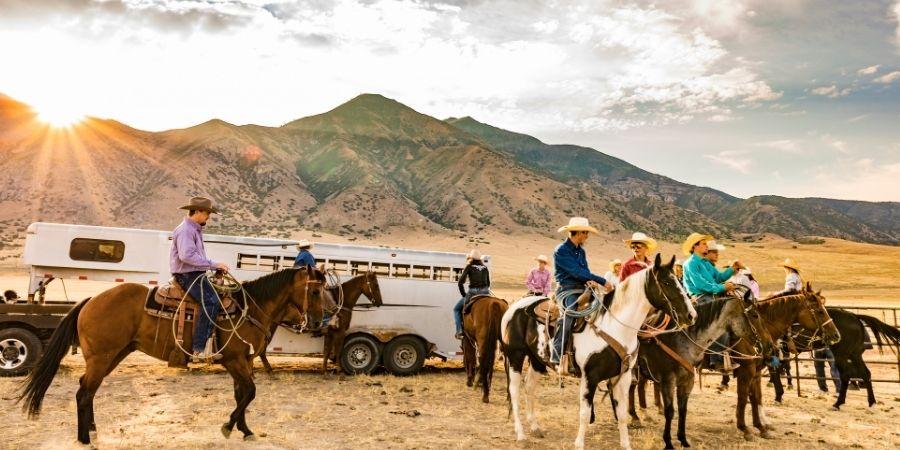 Paseos y rutas de caballos en Nueva Zelanda