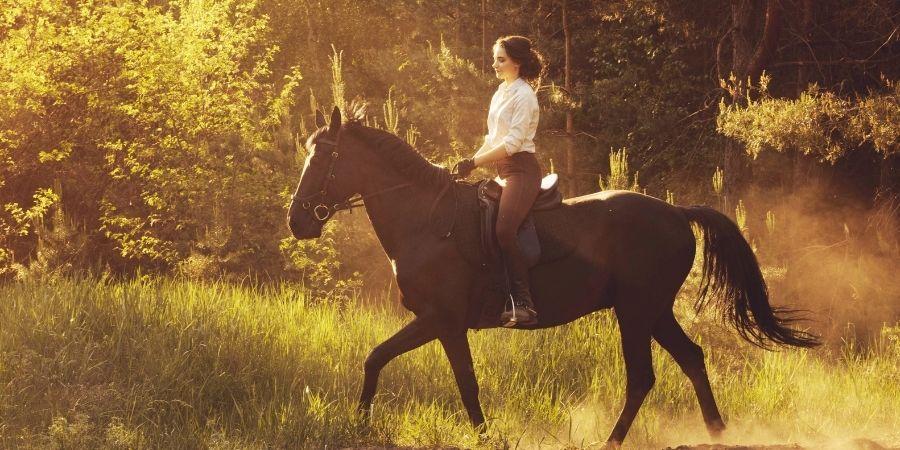 Horse NZ paseos espectaculares