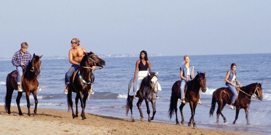 Actividad de disfrute en Nueva Zelanda montar a caballo