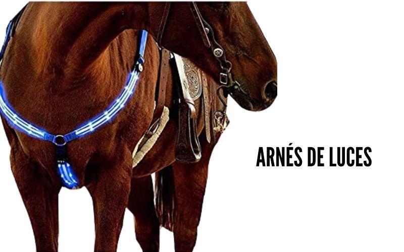 martigala de luces para caballos