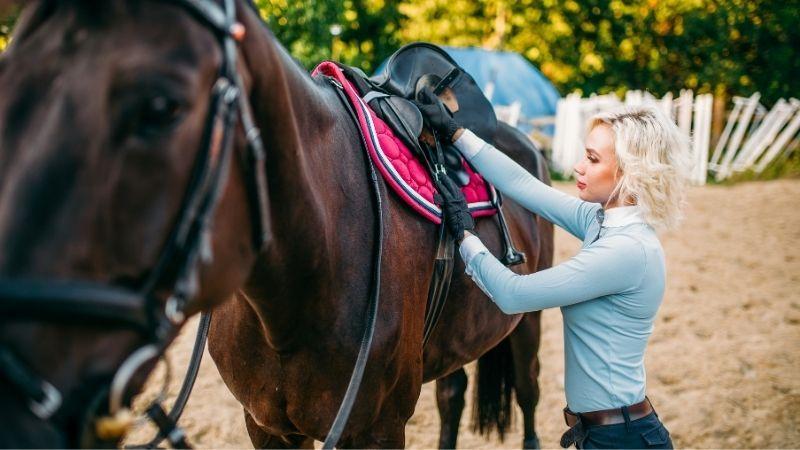 monturas para caballos